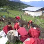 Gardening monk style