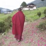 Lama Namgay